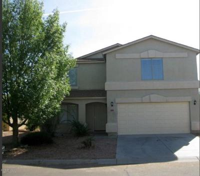 San Tan Valley Single Family Home For Sale: 1237 E Silktassel Trail