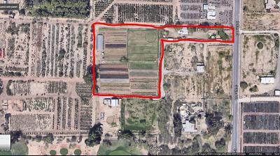 Phoenix Residential Lots & Land For Sale: 6610 S 32nd Street