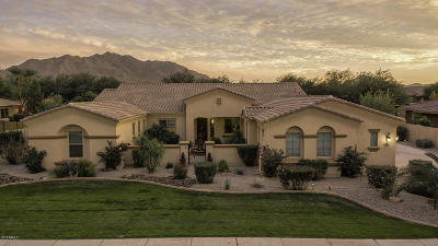 Gilbert Single Family Home For Sale: 3097 E La Costa Drive