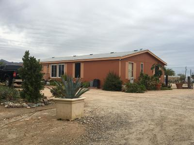 Litchfield Park Mobile/Manufactured For Sale: 19366 W Osborn Road
