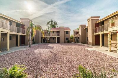 Glendale Rental For Rent: 5233 W Myrtle Avenue #207