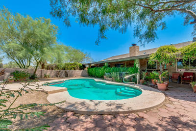 Cave Creek Single Family Home For Sale: 29032 N 62nd Street