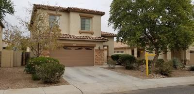 Casa Grande Single Family Home For Sale: 298 W Rio Drive