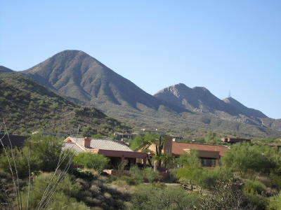 Fountain Hills Residential Lots & Land For Sale: 15214 N Elena Drive