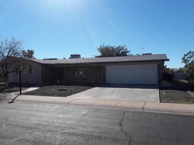 Mesa Single Family Home For Auction: 5719 E Dodge Street