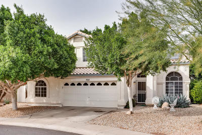 Gilbert Single Family Home For Sale: 868 W Lobster Trap Drive