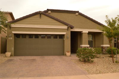Phoenix Single Family Home For Sale: 3247 W Gran Paradiso Drive