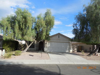 Surprise Rental For Rent: 13961 N 133rd Drive