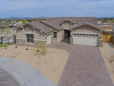 Phoenix Single Family Home For Sale: 7707 S 43rd Place