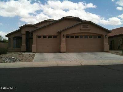 Maricopa Rental For Rent: 21565 N Van Loo Drive