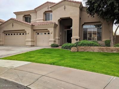 Gilbert Single Family Home For Sale: 1049 E Erie Court