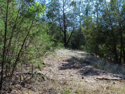 Residential Lots & Land For Sale: 3054 N Neal Drive