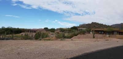 Gold Canyon Residential Lots & Land For Sale: 3650 S Kings Ranch Court