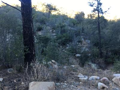 Residential Lots & Land For Sale: 23155 S Towers Mountain Road