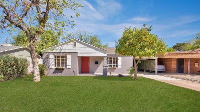 Phoenix Single Family Home For Sale: 602 W Turney Avenue