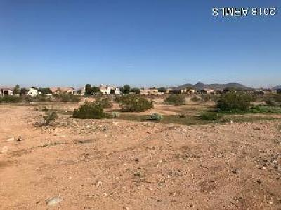 Peoria Residential Lots & Land For Sale: 10102 W Pinnacle Peak Road