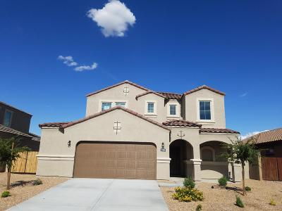 Casa Grande Single Family Home For Sale: 2324 E Alida Trail