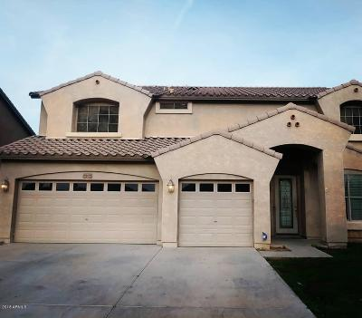 Phoenix Single Family Home For Sale: 6108 S 33rd Drive