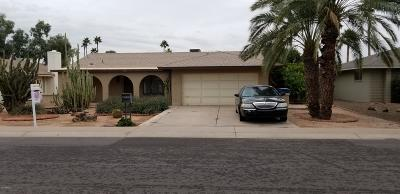 Tempe Single Family Home For Sale: 3409 S Bala Drive S