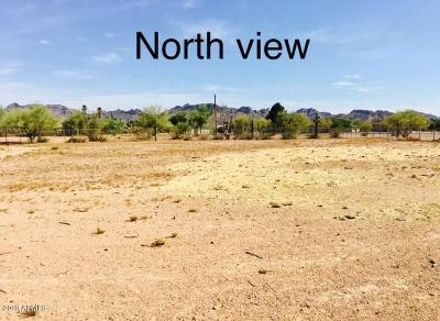 Apache Junction Residential Lots & Land For Sale: 925 W Tepee Street
