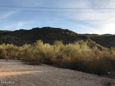 Phoenix Residential Lots & Land For Sale: 1728 E Dobbins Road