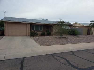 Apache Junction Single Family Home For Sale: 1528 S Palo Verde Drive