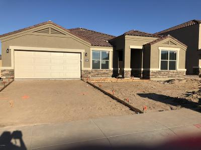 San Tan Valley Single Family Home For Sale: 646 W Belmont Red Trail
