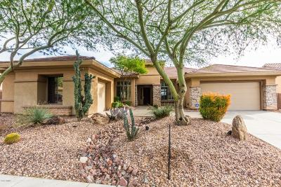 Phoenix Single Family Home For Sale: 40223 N Lytham Way