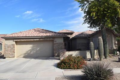 Casa Grande Single Family Home For Sale: 2646 E Golden Trail