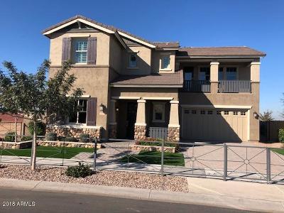 Gilbert AZ Single Family Home For Sale: $865,000