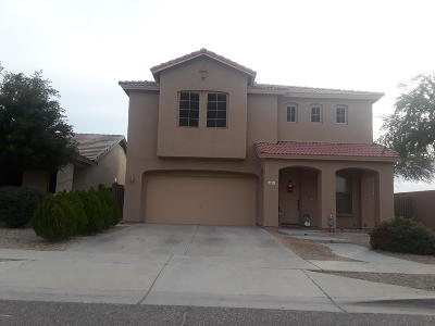 Phoenix Single Family Home For Sale: 4601 N 95th Drive