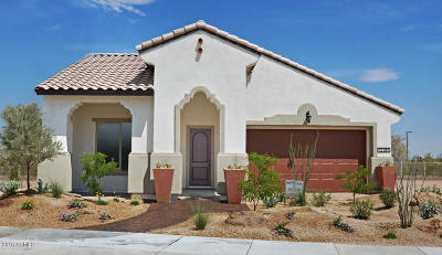 Goodyear Single Family Home For Sale: 12170 S 184th Avenue