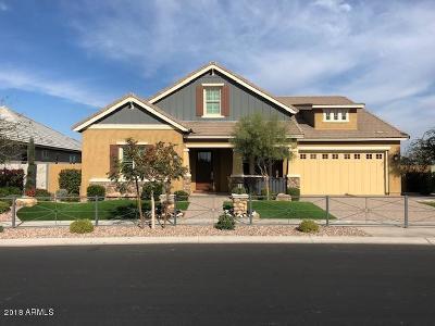 Gilbert AZ Single Family Home For Sale: $965,000
