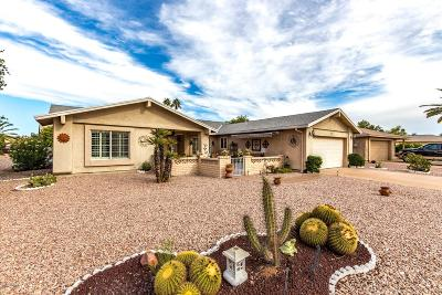 Mesa Single Family Home For Sale: 1743 Leisure World