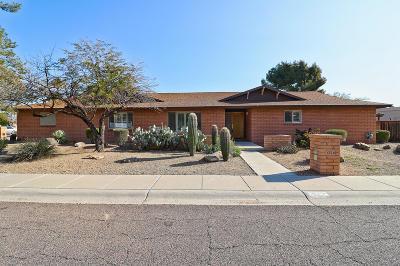 Phoenix Single Family Home For Sale: 123 W Braeburn Drive