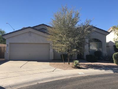 Phoenix Single Family Home For Sale: 1207 W Betty Elyse Lane
