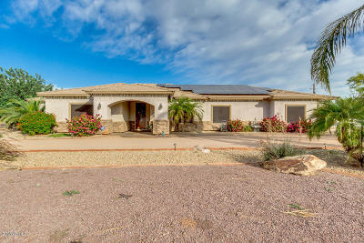 Queen Creek Single Family Home For Sale: 19746 E Palm Beach Drive
