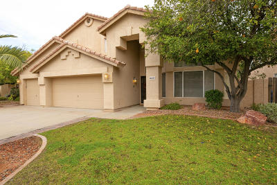Maricopa County Single Family Home For Sale: 16653 S 38th Street