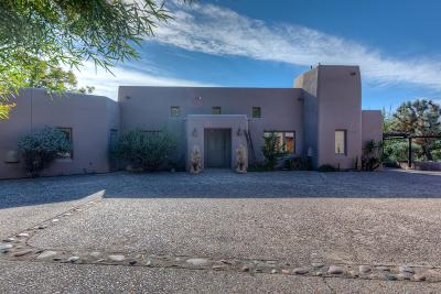 Maricopa County Single Family Home For Sale: 6320 E Old Paint Trail