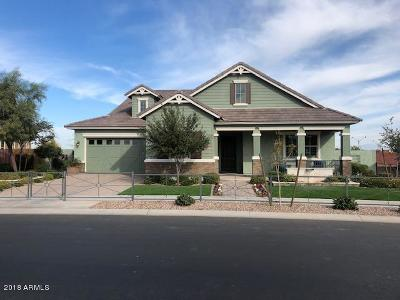 Gilbert AZ Single Family Home For Sale: $865,000