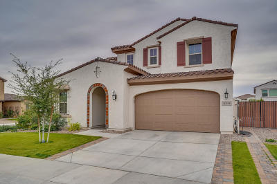 Chandler Single Family Home For Sale: 919 W Yellowstone Way