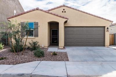 Tolleson AZ Single Family Home For Sale: $259,900