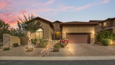 Mesa AZ Single Family Home For Sale: $515,000