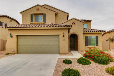Surprise Single Family Home For Sale: 17510 W Pinnacle Vista Drive