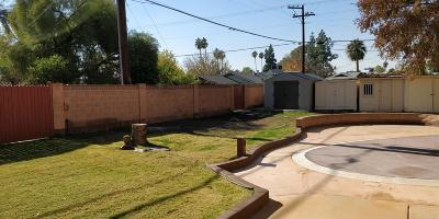 Phoenix Single Family Home For Sale: 225 W Orchid Lane