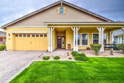 Gilbert Single Family Home For Sale: 2836 E Sagebrush Street