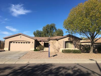 Queen Creek Single Family Home For Sale: 20864 E North Loop