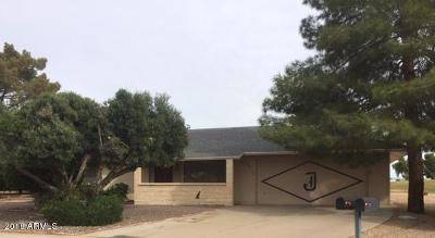 Sun City Single Family Home For Sale: 12231 N Sun Valley Drive