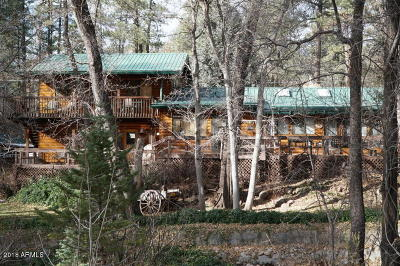 Payson Single Family Home For Sale: 345 W Ashby Apple Drive