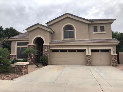 Peoria Rental For Rent: 7081 W Cottontail Lane